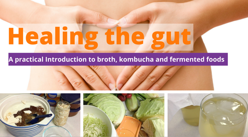 Healing the Gut Workshops