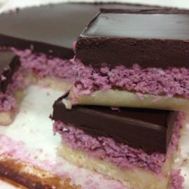 Chocolate Coconut Berry Ripe Slice (Fermented and low carb)